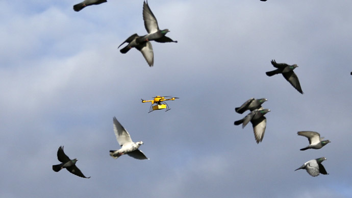 "A flock of pigeons flies with a prototype ""parcelcopter"" of German postal and logistics group Deutsche Post DHL in Bonn"