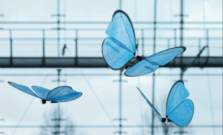 Drony inspirowane przez naturę – przegląd bionicznych owadów.