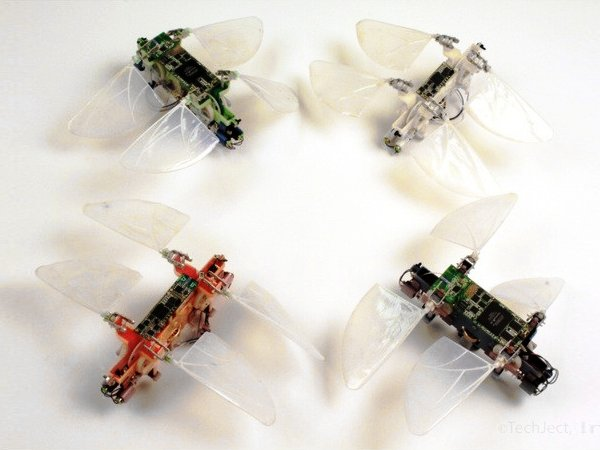 DragonFly, fot: techject.com