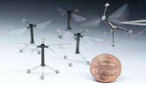 RoboBee fot: micro.seas.harvard.edu