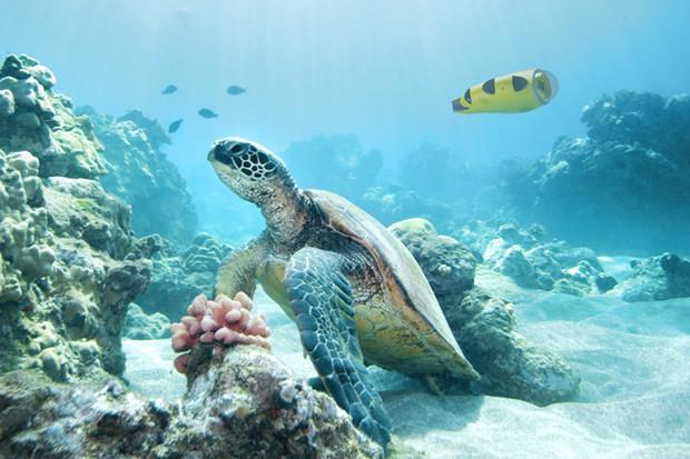 iBubble – podwodna rewolucja z dobrze znaną kamerką GoPro